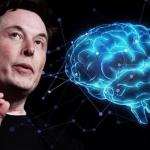 Elon Musk lucreaza la dezvoltarea unui cip care va permite transmiterea muzicii direct in creier