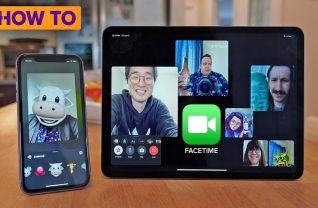Skype, Zoom, si FaceTime
